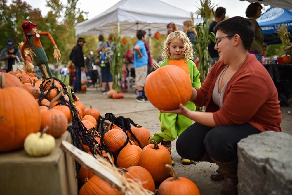 Oct. 26 market is a pumpkin patch